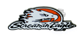 Harley-Davidson® Pin Screamin Eagle