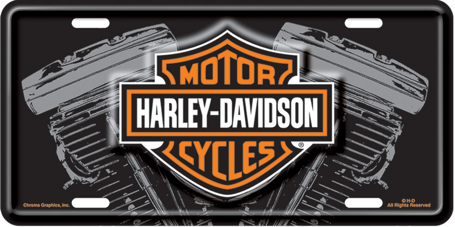 cg1842 - harley-davidson® black front license plate b&s with v