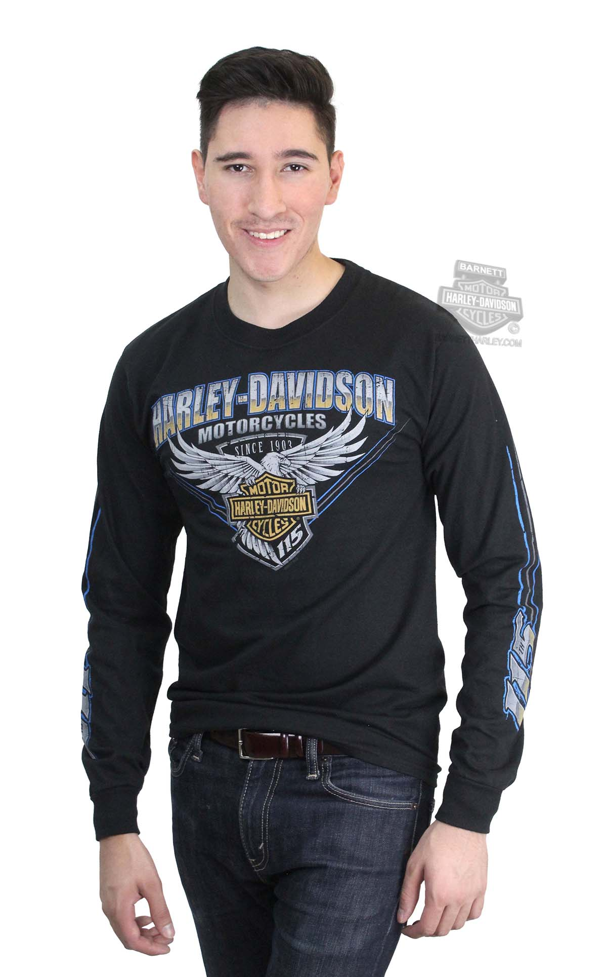 ** SIZE 3X ONLY ** Harley-Davidson® Mens Stripe 115th Anniversary Eagle Black Long Sleeve T-Shirt