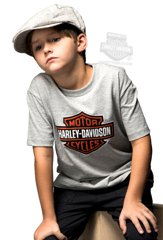 ** SMALL SIZES ONLY ** Harley-Davidson® Boys Youth Flaming Shield B&S Grey Short Sleeve T-Shirt *CYB*